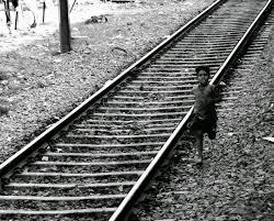 circus running from train shweta mustare